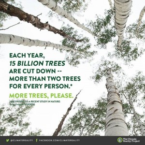 Each year 15 billion trees are cut down